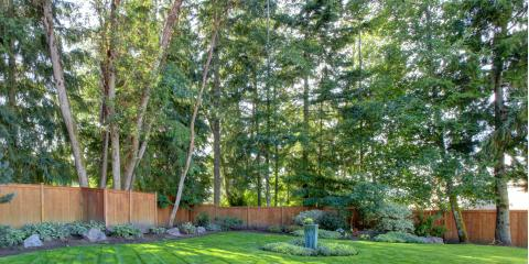 3 Tree Maintenance Tips to Keep Your Trees Healthy Year-Round, Sparta, Georgia