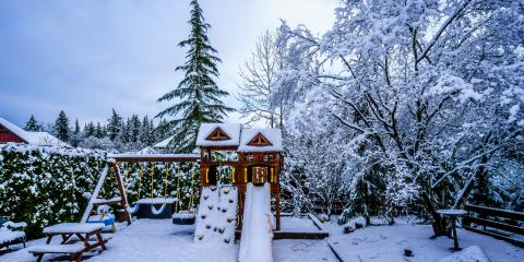 3 Reasons Winter Is a Great Time for Tree Pruning, Anchorage, Alaska