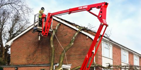Why You Should Never Delay Removal of Damaged Trees After a Storm, De Motte, Indiana