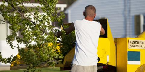 How to Prepare Your Property for Tree Removal, Butler, Ohio