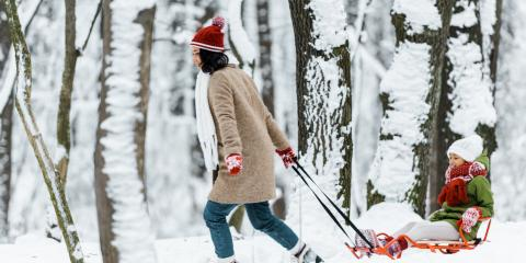 A Quick Guide to Post-Winter Tree Care, Miamitown, Ohio