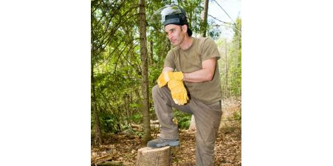 Remove Hazardous Trees From Your Yard With Tidwell's Tree Service, Sparta, Georgia