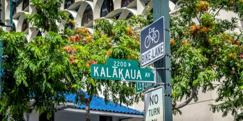 4 Benefits of Street Trees in Hawaii, Makawao-Paia, Hawaii