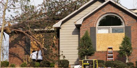 Why Professionals Should Handle Tree Removal Near Your Home, Snow Hill, Missouri