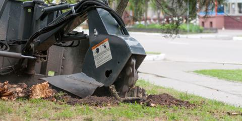 A Brief Introduction to Stump Grinding After Tree Removal, Florence, Kentucky