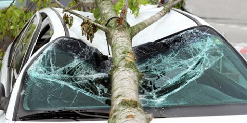 Will Homeowners Insurance Cover Tree Removal After a Storm?, Millersport, Ohio