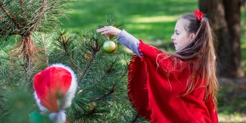 5 Ways to Make Your Yard Beautiful for the Holidays, Crescent, Wisconsin