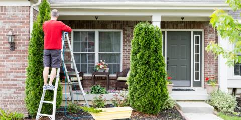 3 Reasons to Have Your Home's Trees Pruned, St. Charles, Missouri