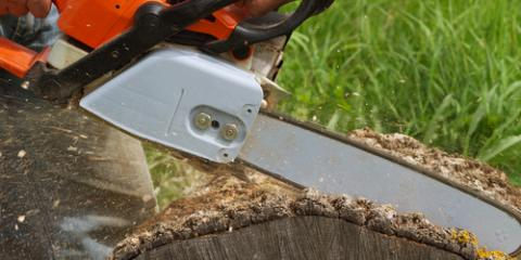 Why You Should Leave Stump Removal to the Pros, Manhattan, New York