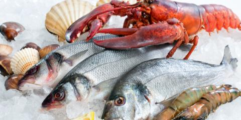 4 Things to Expect From a Top Wholesale Fish Market, Honolulu, Hawaii