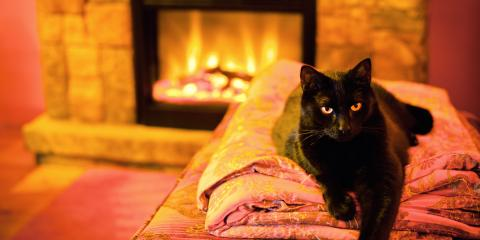 5 Essential Fire Safety Tips for Pet Owners, Wentzville, Missouri
