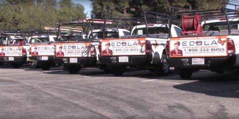 Ecola's August Savings Specials:, Oxnard, California