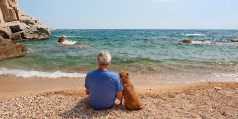 4 FAQ About Pet Trusts, Honolulu, Hawaii