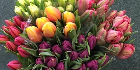 Roaring Oaks Florist Offers Fresh Flowers to Enhance Any Room This Winter, Lakeville, Connecticut
