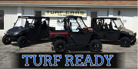 3 Fun & Useful Reasons to Buy A Custom Golf Cart - Turf Cars
