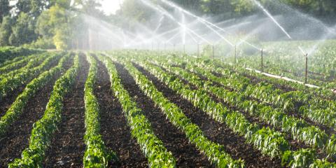 3 Reasons to Winterize Your Irrigation System, Columbus, North Carolina