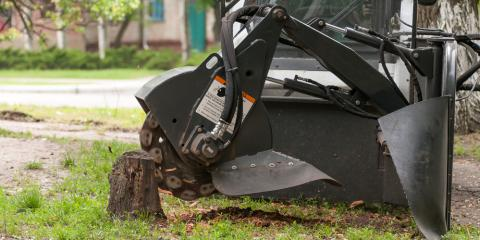 Understanding the Difference Between Stump Grinding & Stump Removal, Summerdale, Alabama