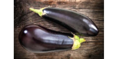 Eggplant: The Good and Bad, Manhattan, New York