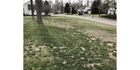 Hydroseed and lawn repair Discounts , Scottsville, New York