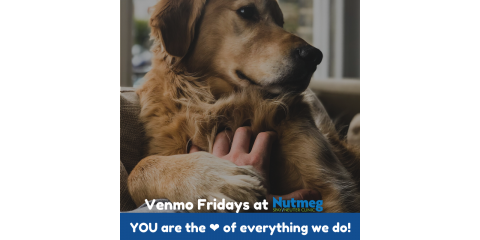 #VenmoFridays: Invest in Your Values @NutmegSpayNeuterClinic, Stratford, Connecticut