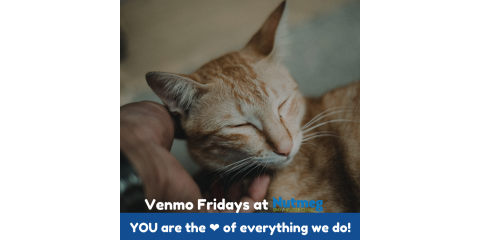 #VenmoFridays: Brown Bag your lunch today and give direct, invaluable support to pets in underserved neighborhoods!, Stratford, Connecticut