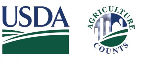USDA Releases July, 2020 Regional and National Stocks in Refrigerated Warehouses, Hialeah, Florida