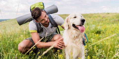 Do's and Don'ts for Taking Your Dog on a Hike, Huntersville, West Virginia