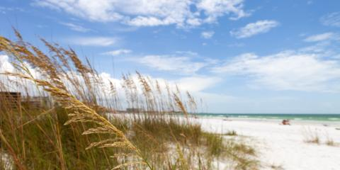 Best Parks for Ecosploring on Your Destin Vacation, Panama City Beach, Florida