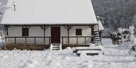 3 Reasons to Continue Pest Control in the Winter, Reading, Ohio