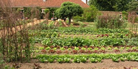 Rejuvenate Your Soil & Your Crops With Bountea Organics Tea Systems , Pueblo, Colorado