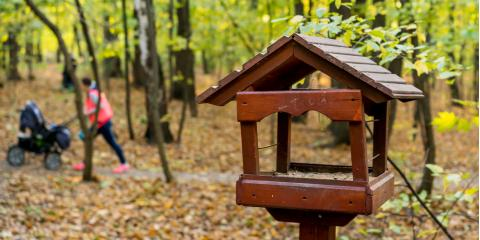 Local Feed Dealer Shares 4 Places to Install Bird Feeders, Foristell, Missouri