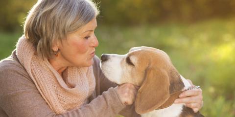 3 Ways Adopting a Pet Will Improve Your Life, Florence, Kentucky