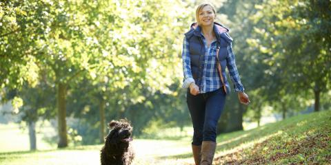 Veterinarians Share 5 Health Benefits of Walking Your Dog, Florence, Kentucky