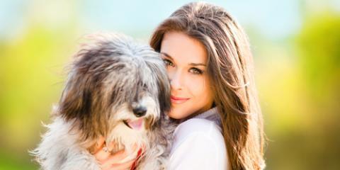 A Veterinarian Shares 3 Prep Tips for Pet Boarding, Ewa, Hawaii