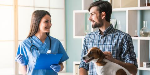 5 Questions Every Pet Owner Should Ask Their Veterinary Clinic, Clarksville, Arkansas