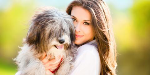 Veterinary Clinic Shares 3 Important Reasons to Neuter Your Pet, Piney, Missouri