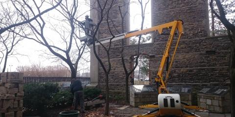 4 Expert Tips for Choosing a Tree Service Company, Victor, New York