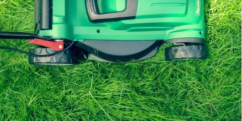 4 Tips for Saving Money on Your Lawn Care, Freedom, Wisconsin
