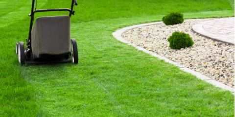 How to Care for St. Augustine Grass, Wahiawa, Hawaii