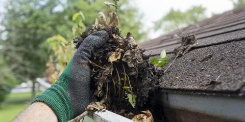 3 Tips to Prevent Plant Growth in Gutters, Wahiawa, Hawaii