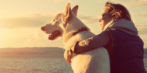 A Guide to Estate Planning for Pet Owners, Wahoo, Nebraska