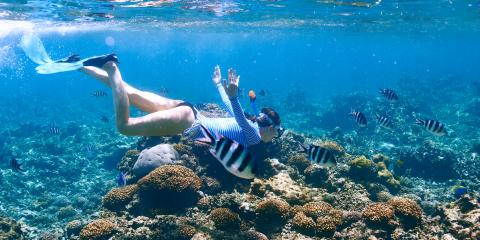 5 Tips for Underwater Photography, Waianae, Hawaii