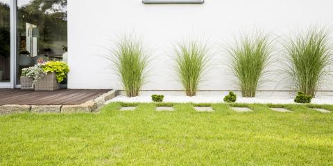 Why Lawn Care Is Essential for Your Home, Waianae, Hawaii