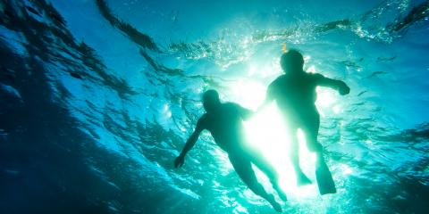 3 Reasons to Have a Snorkeling Tour Date, Waianae, Hawaii