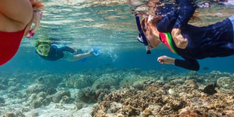 Why You Should Take Your Kids on a Snorkeling Tour, Waianae, Hawaii