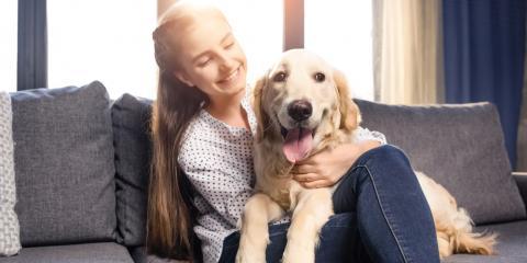 Affordable Pet Clinic Offers 20% Off Preventative Medication, Wailuku, Hawaii