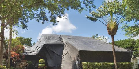 What to Know About Tent Fumigation, Wailuku, Hawaii