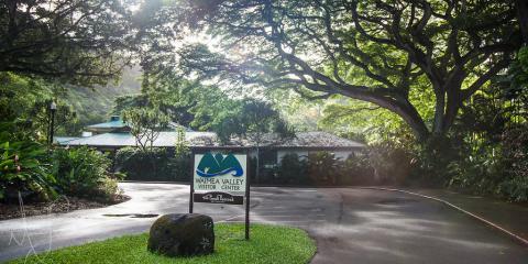 Experience Hawaiian Culture This Summer at Haleiwa's Local Historic Site, Koolauloa, Hawaii