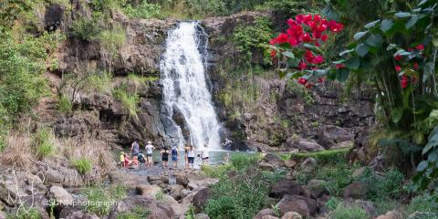 5 Hawaiian Culture and Botanical Activities at Waimea Valley, Koolauloa, Hawaii