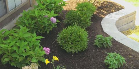 """""""Spring"""" Into A New Look For Your Yard With Custom Landscaping From Eagle Creek, Taylor Creek, Ohio"""